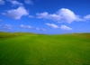 Bigstockphoto_green_field_with_blue
