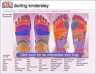 Dk_reflexology_foot_l